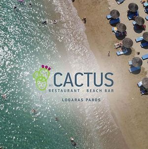 Cactus Beach Paros photos Exterior