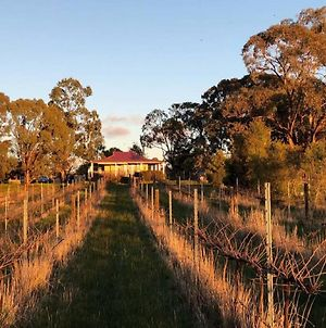 Lillicur Vineyard B&B photos Exterior