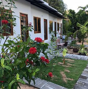 Bi Homestay photos Exterior