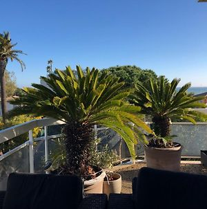 Gorgeous One-Bedroom Apartment With Terrace And Sea View -Stayinantibes- Bijou Plage photos Exterior