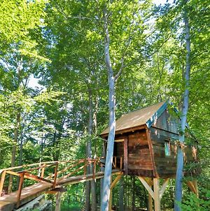 Treehouse Na Skaluc photos Exterior