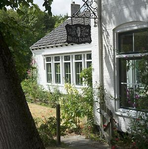 In De Witte Handt photos Exterior