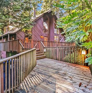Cozy Treehouse photos Exterior