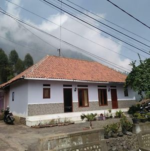 Homestay Adam Gunung Bromo photos Exterior