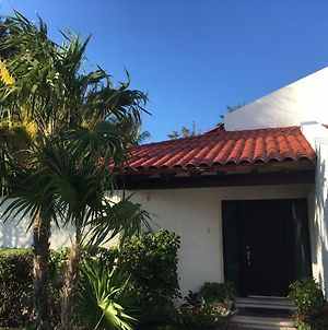 Large House - Walking To Beach - 10 Guests! photos Exterior