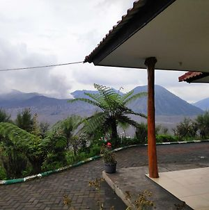 Bromo Holiday Guesthouse photos Exterior