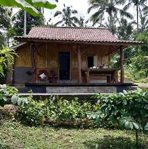 Bali Mountain Forest Cabin photos Exterior