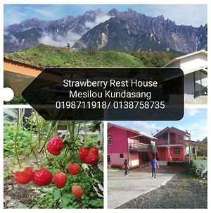 Strawberry Rest House Mesilou Kundasang photos Exterior