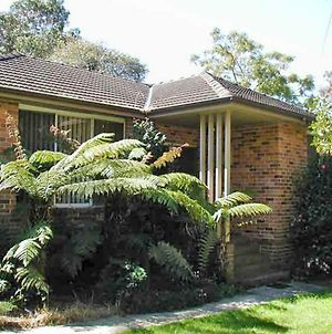 Accommodation Sydney North - Frenchs Forest 3 Bedroom 1 Bathroom House photos Exterior