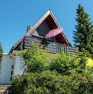 Cosy Holiday Home In Niedergebisbach Near Ski Area photos Exterior