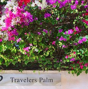 Travelers Palm Inn photos Exterior
