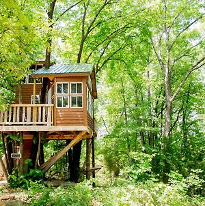 The Cottage Treehouses photos Exterior