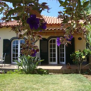 Madeira Wine Cottages photos Exterior