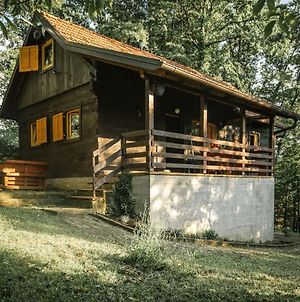 Wooden House Near The River Kupa photos Exterior