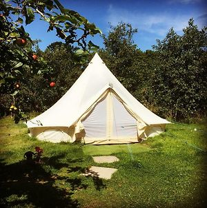 The Apple Farm Glamping photos Exterior