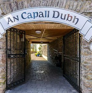 Dingle Centre Townhouse An Capall Dubh Dingle photos Exterior