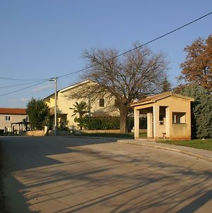 Apartments And Rooms With A Swimming Pool Babici, Umag - 3046 photos Exterior
