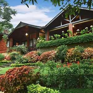 Homes Bungalow By Tree Of Life photos Exterior
