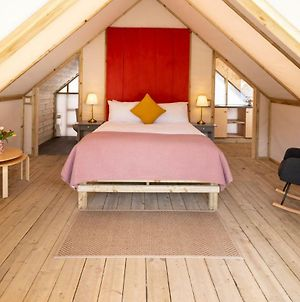Killarney Glamping At The Grove, Suites And Lodges photos Exterior