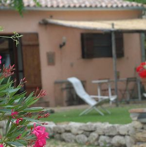 Silence And Relaxation For Families And Couples In The Countryside Of Umbria photos Exterior
