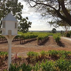 'In The Vines' Guest Cottage, Barossa Valley photos Exterior