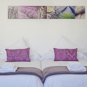 Charmsuites Paralel photos Room