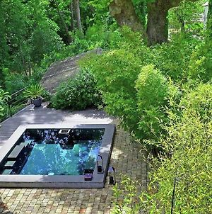 Elite Mansion With Swimming Pool In Le Revest-Les-Eaux photos Exterior