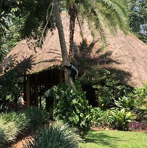 Kibale Forest Camp One Of The Best Choice For A Great Experince In Uganda photos Exterior