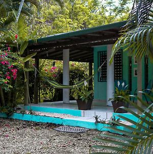 Rincon Blu Tropical House photos Exterior