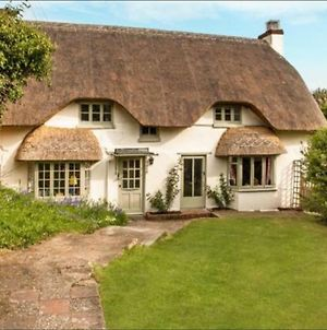 Beautiful Thatched Cottage In Lovely Village. photos Exterior