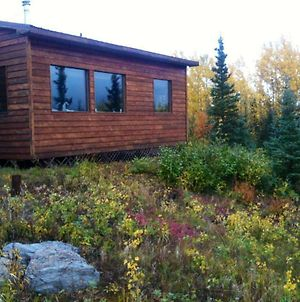 Denali Nightly House Rentals photos Exterior