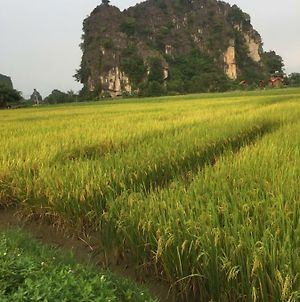 Tam Coc Heart Homestay photos Exterior