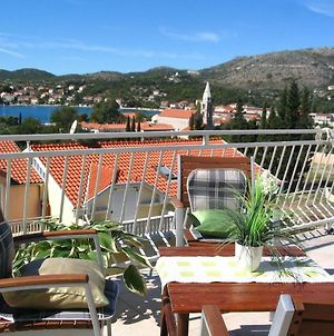 Apartments With A Parking Space Slano, Dubrovnik - 12576 photos Exterior
