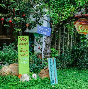 Seaweed Homestay Hoi An photos Exterior