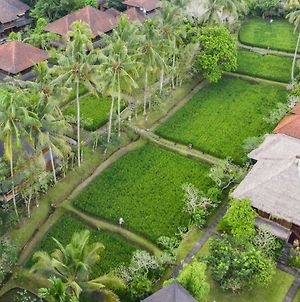 Ananda Ubud Resort photos Exterior