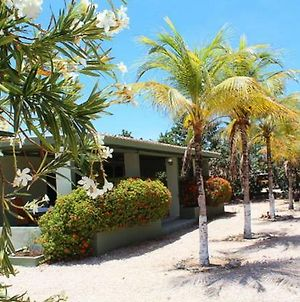 Walking Distance To The Beach Perfect Home photos Exterior