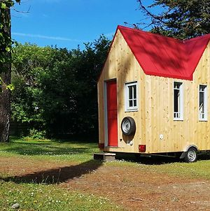 Tiny House Et Tentes En Coton Dans La Pinede photos Exterior