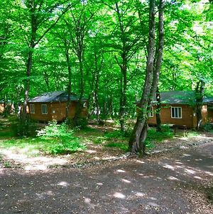 Ekran Eco Forest Resort photos Exterior