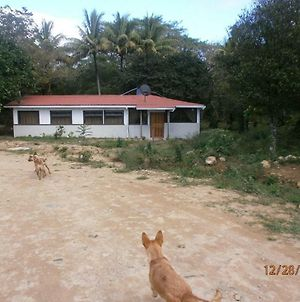 Talamanca 1 Your Budget Cabin Is Waiting For You At Juan Manuel National Park photos Exterior