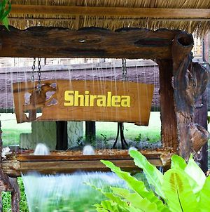 Shiralea Backpackers Resort photos Exterior