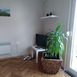 Apartment Five Minutes From Pula City Centre photos Exterior