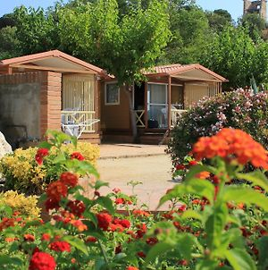 Camping Roca Grossa photos Exterior