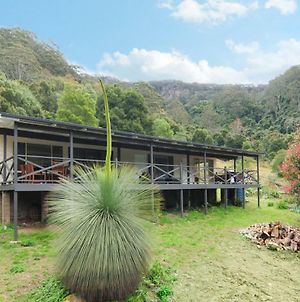 Cabbage Tree Farm - Seclusion And Tranquillity! photos Exterior