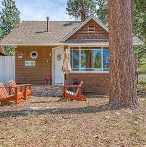 Squirrel'S Landing - 1 Bed 1 Bath Vacation Home In Big Bear Lake photos Exterior