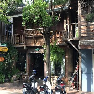 Good Morning Chiang Mai Tropical Inn photos Exterior