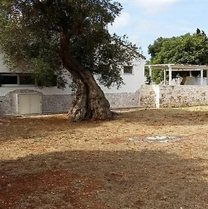 House With 3 Bedrooms In Serranova, With Furnished Garden - 1.8 Km Fro photos Exterior