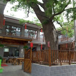 Beijing Great Wall XI Shui Yu Cun Li Bao Zhong Homestay photos Exterior