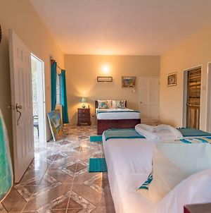 Spacious Vacation Apt In Negril photos Room