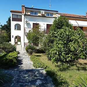 House Puseljic - Apartment 4. - Studio A2 For Max 2 Pax With Own Tennis Court photos Exterior