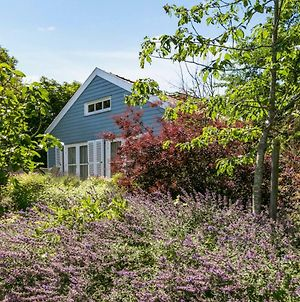 Holiday Home Loevesteijn - Ouddorp, Garden With Terrace, 1000 Meters From The Beach And Dunes - Not For Companies photos Exterior